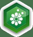 ikona kvetiny s peľom
