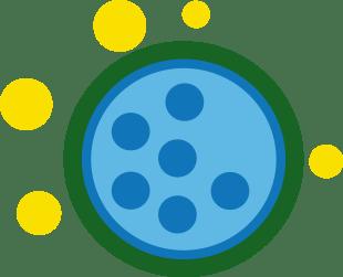 Flixonel blokuje 6 kľúčových zápalových látok
