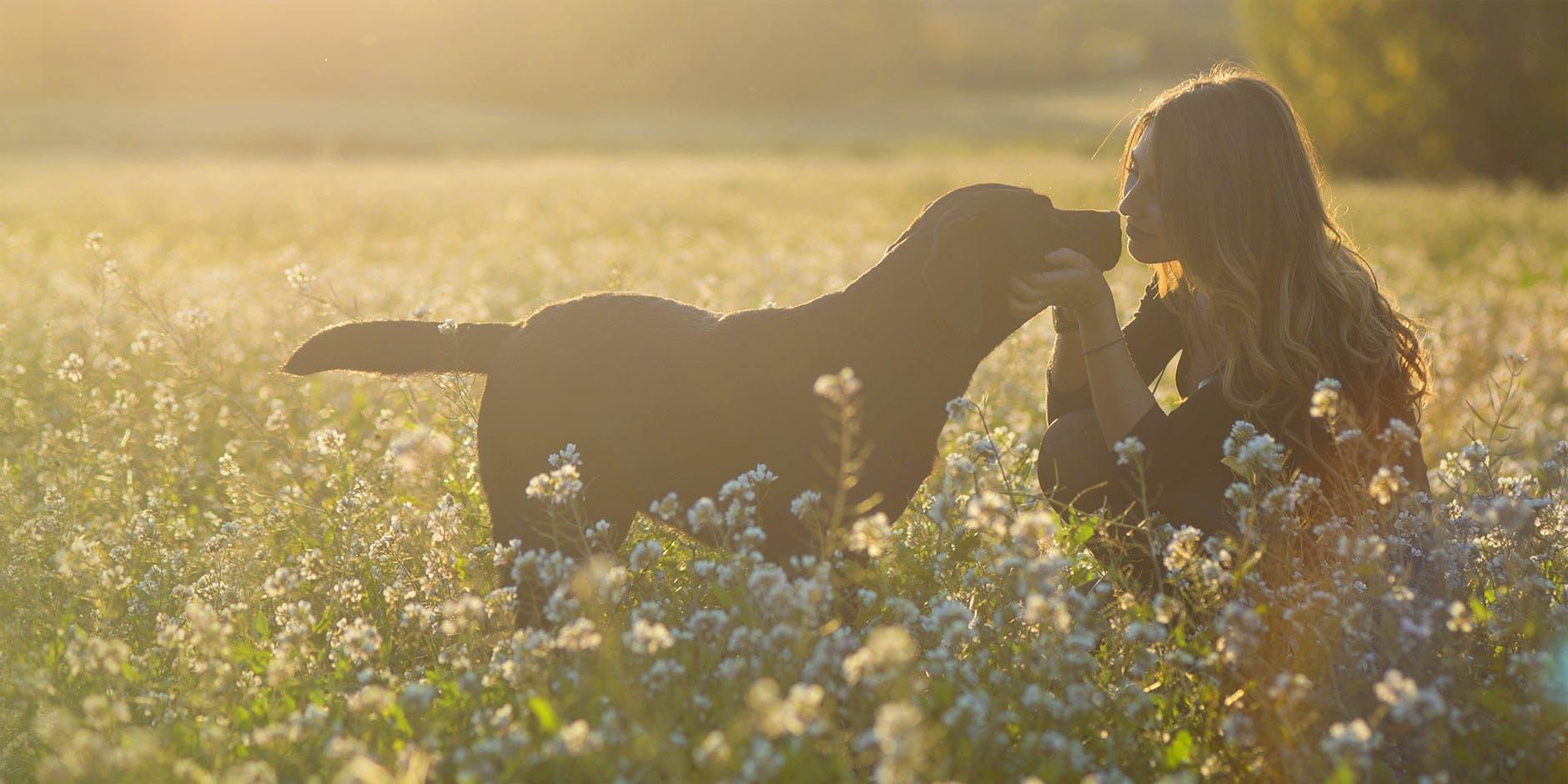 Woman sitting in meadow petting her dog