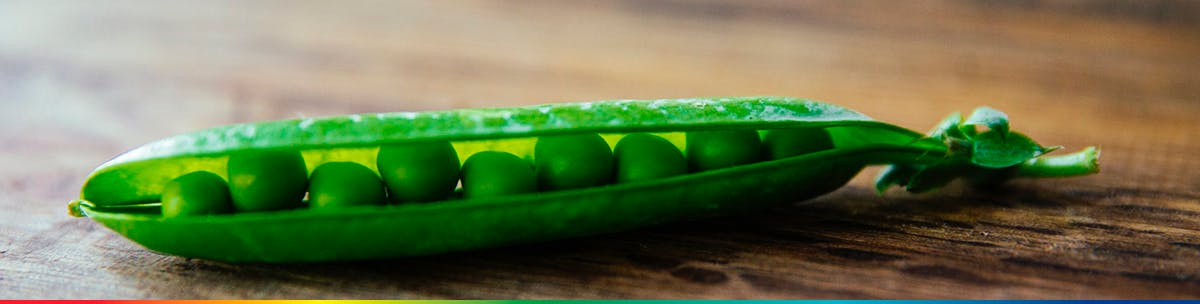 Open pea pod on a table