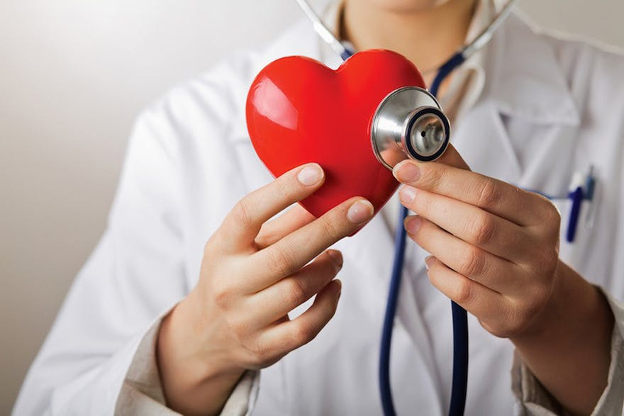 Heart and brain health and doctor holding a heart thumbnail