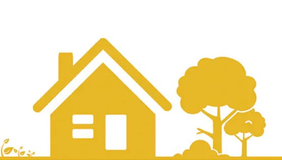 Dust Mite Allergies | Causes, Symptoms & Treatment