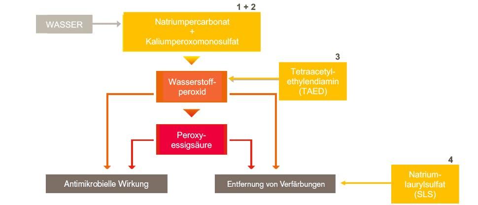 Für die Tiefenreinigung wirken vier Inhaltsstoffe zusammen