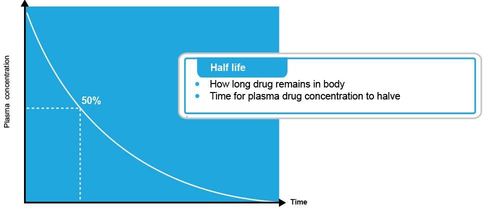 Graph showing the half life of paracetamol