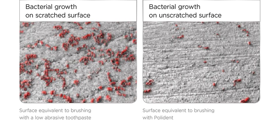 Bacteriapanel2