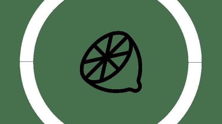 Orange segment icon