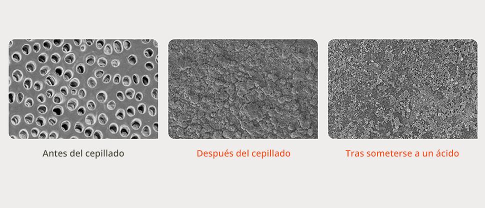 Imágenes de microscopio electrónico de barrido (SEM) de la superficie de la dentina