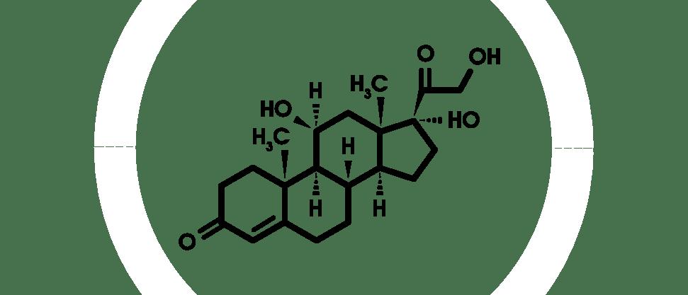 Химическая структура гидрокортизона