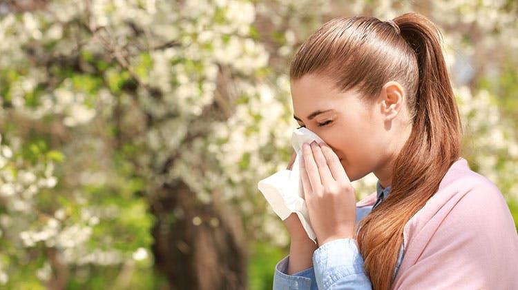 Женщина, чихающая из-за сенной лихорадки