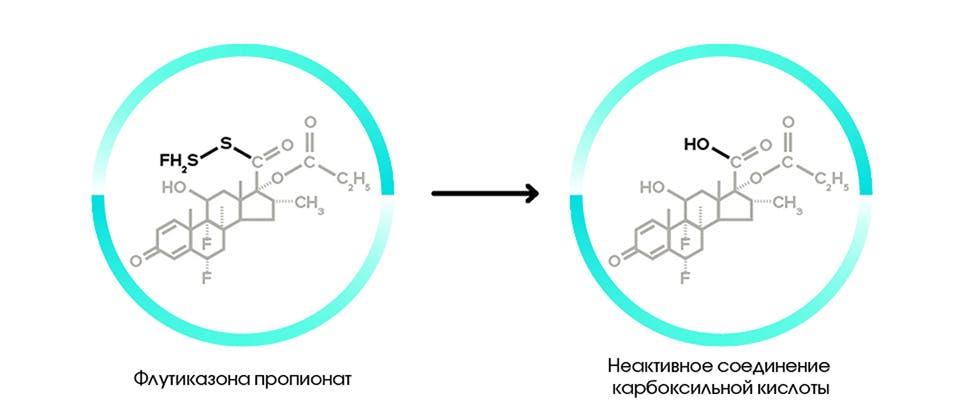 Рис.1 Метаболизм флутиказона пропионата [4].