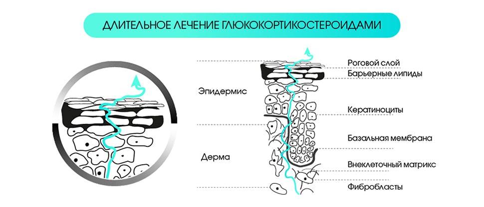 Атрофогенное действие