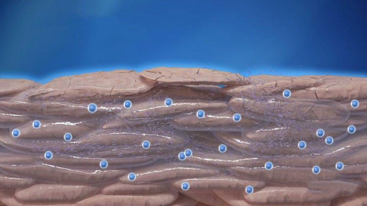 диаграмма, показывающая улучшение доставки тербинафина в роговой слой