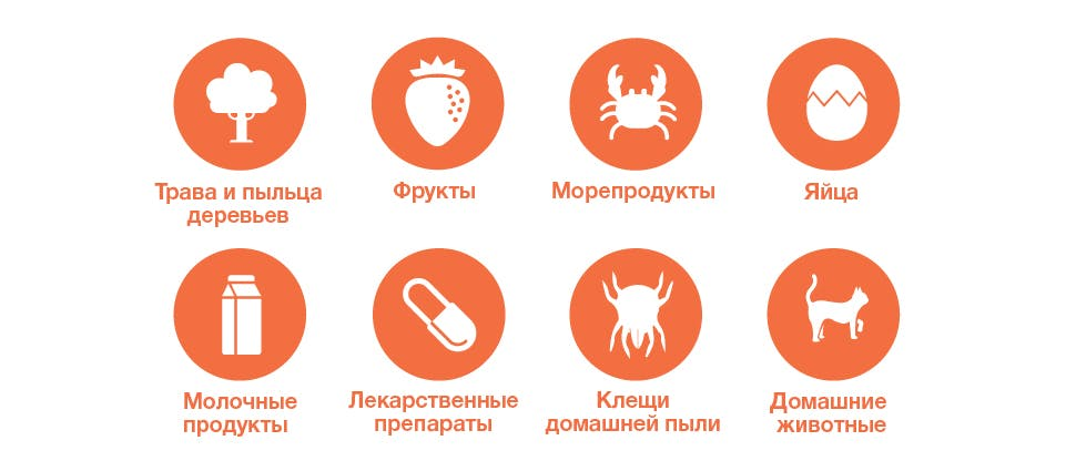 трава и пыльца деревьев; фрукты, морепродукты, яйца, коровье молоко; лекарственные препараты; пылевые клещи; кошка или собака
