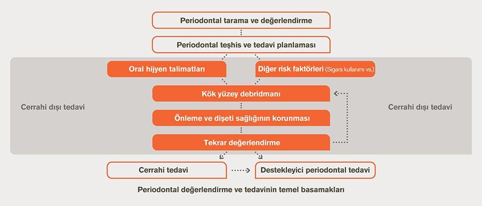 Periodontal değerlendirme ve tedavi akış şeması