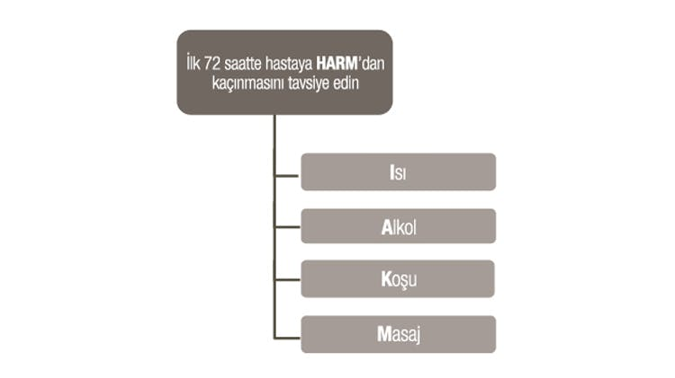 HARM protokolü