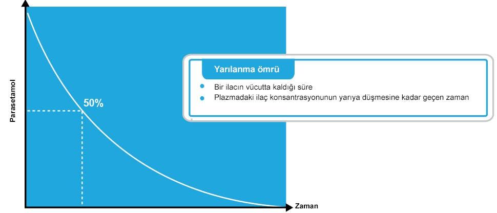 Parasetamolün yarılanma ömrünü gösteren grafik