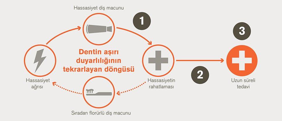 Dentin aşırı hassasiyetinin tekrarlayan döngüsü ve tedavinin hedefleri