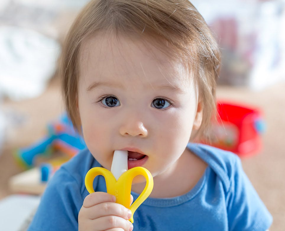 Bebé masticando un jueguete alimentador para bebé.