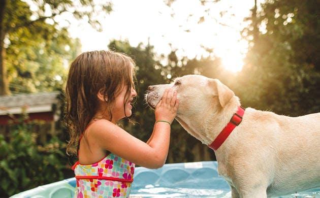 Beneficios de tener mascotas