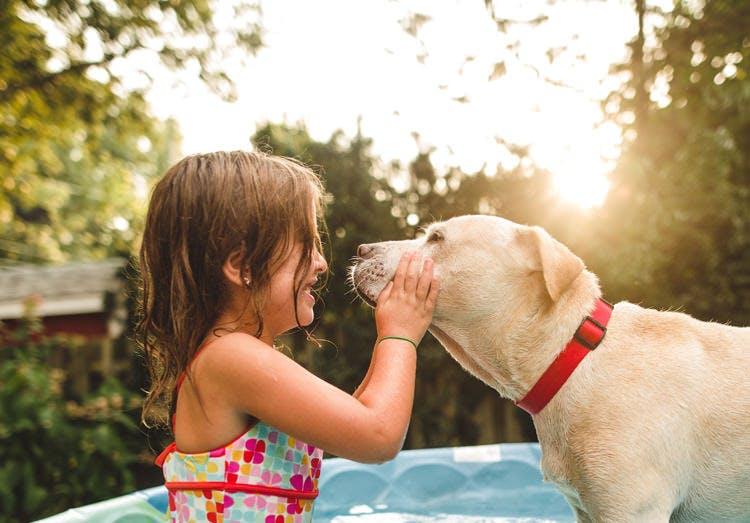 Una niña juega al aire libre con un perro.
