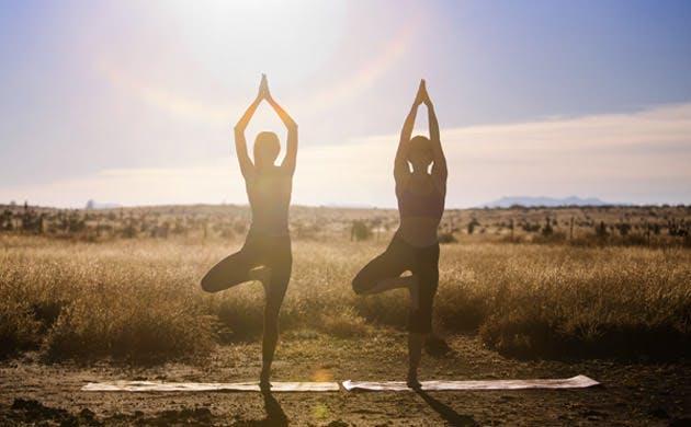 Two Women In Yoga Tree Poses In Field
