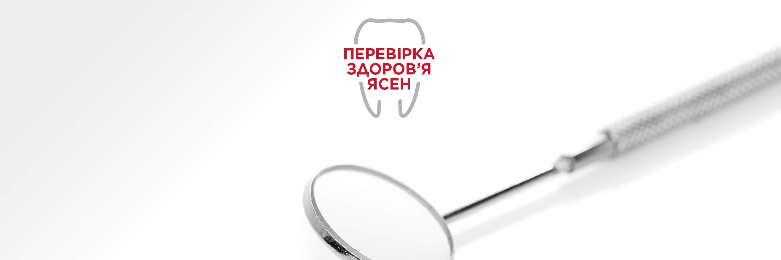 Dentist mirror tool