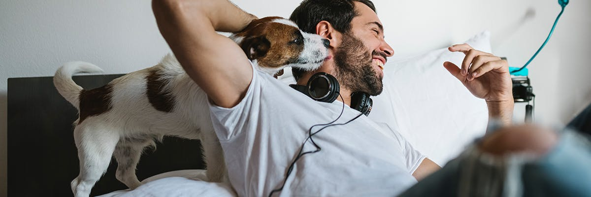 Man laying in his bed, laughing while a dog cuddles into his neck