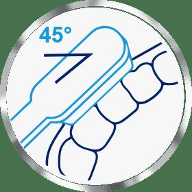 Brushing teeth at a 45 degree angle