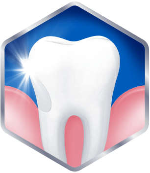 Graphic of healthy gum and tooth
