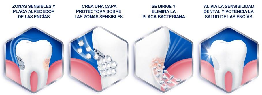 cómo funciona nuestra nueva pasta de dientes para la sensibilidad dental