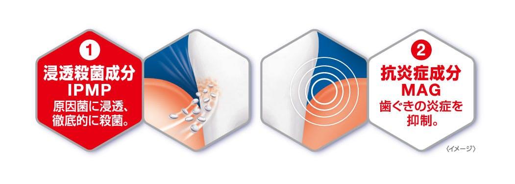 ダブルケアで歯周病を 予防するメカニズム