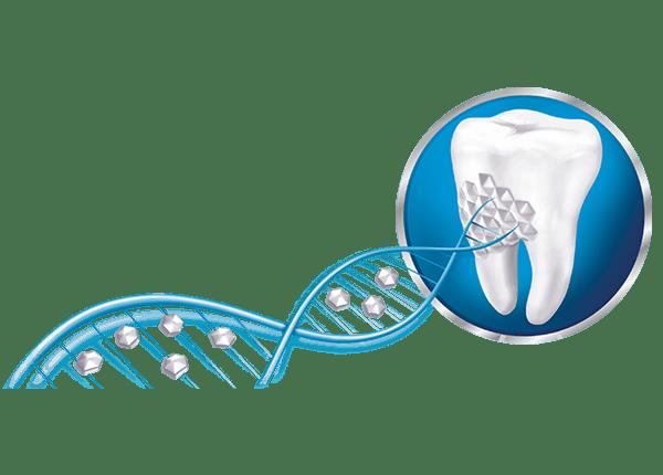 Sensodyne® | Repair & Protect Whitening  tandpasta