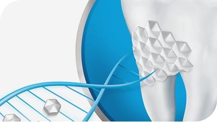 舒酸定專業修復抗敏牙膏美白配方