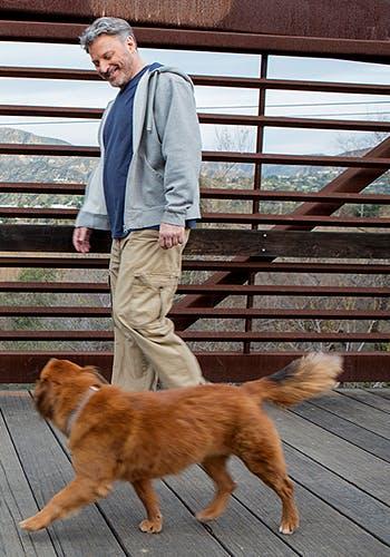 Homme marchant avec son chien