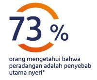 73% orang mengetahui bahwa peradangan adalah penyebab utama nyeri