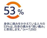 身体に痛みをかかえる人々の53%は自身の痛みを「鈍い痛み」と表現します。*(n=7,050)