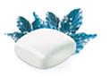 White Ice Mint flavored Nicorette gum