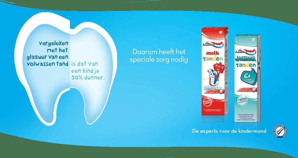 vergeleken met het glazuur van een volwassen tand, is dat van een kindje 50% dunner